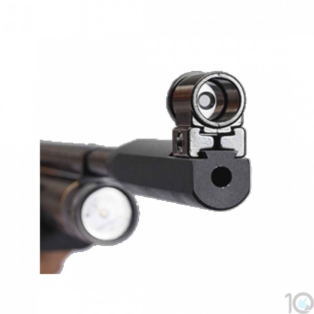 Precihole Aperture Sight Set | Peep Sight 11 mm Rail | Sights & Scopes for  Air Rifles [ HSN 93059900