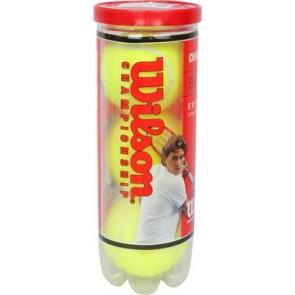 Buy Online Wilson Tennis Balls CHAMPIONSHIP | Wilson Online Store India 10kya.com