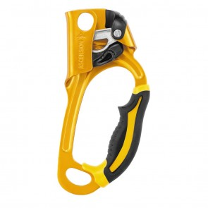 Buy Petzl Ascenders | Ascnssion B17ARA | 10kya.com Petzl Store India
