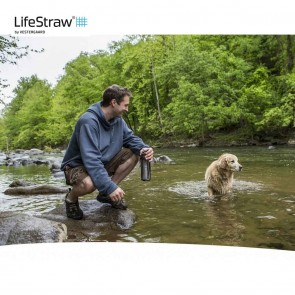 Lifestraw Go 2Stage Water Filter with Bottle - Gray | LSGOV2CR54  [ HSN 84212120