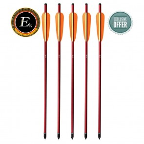 "EK Archery Aluminium Arrow red 16""/2.5"" vanes 