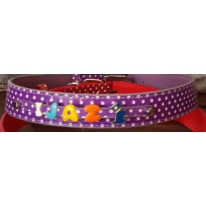 Puppy Love - Sports Collar - Small