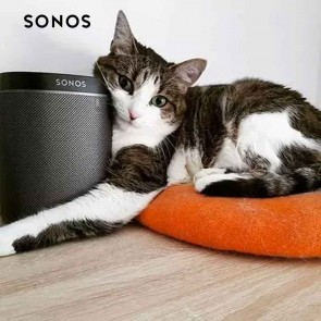 SONOS - PLAY:1 | Compact Wireless Speaker for Streaming Music (Black) | Portable Wireless WiFi Speakers | Sonos Home Audio [HSN 85182900