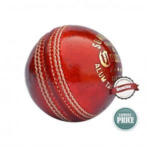 SS County Cricket Season Ball [ HSN 95