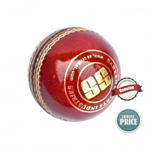 Buy Swinger Cricket Season Ball | 10kya.com SS Cricket Online Store